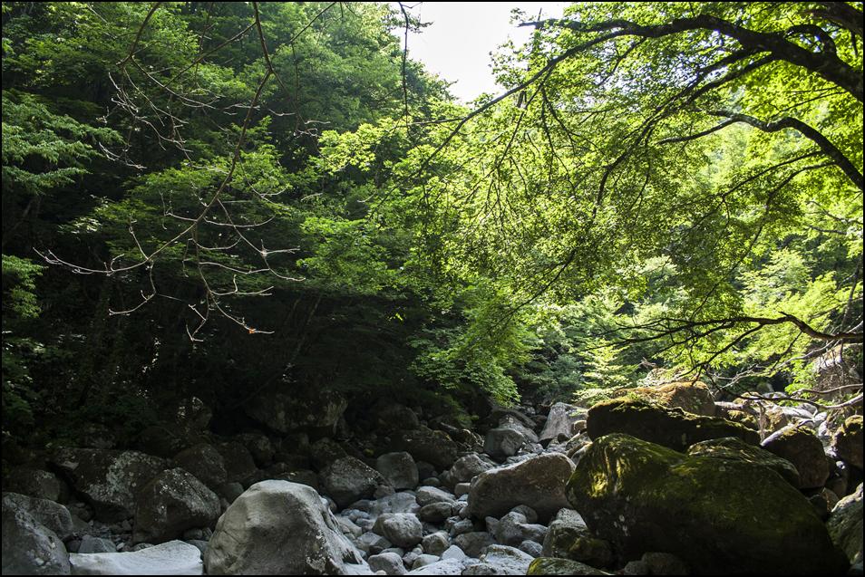 20050621-02.jpg