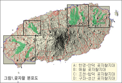 hankyoung.jpg